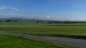 View from Preston Road taken by Paul Johnson